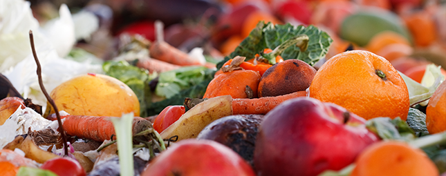 food waste prevention vs recovery