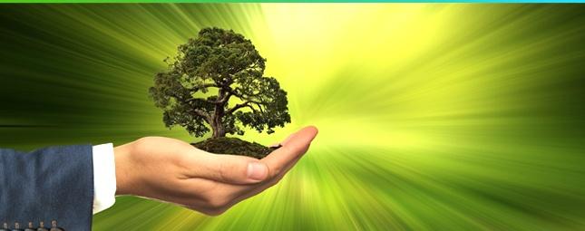 CSR-Blog-Image