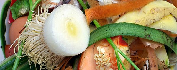 repurposing food waste