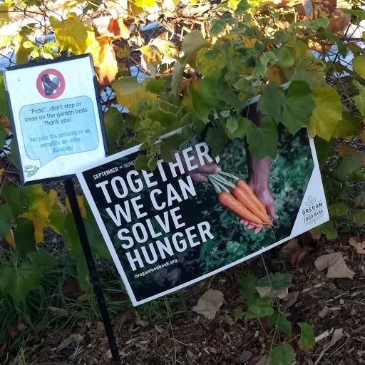 Solve-Hunger