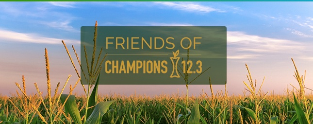 blog-friends-champions.jpg