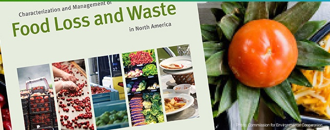 marchNL-food-loss-waste